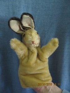 Bunnyrabbit