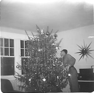 Dad putting finishing touch- tinsel on real Christmas tree, c. 1960